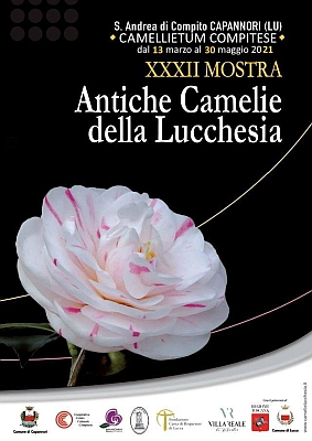 "Poster of the 32nd expo ""Antiche Camelie della Lucchesia"""