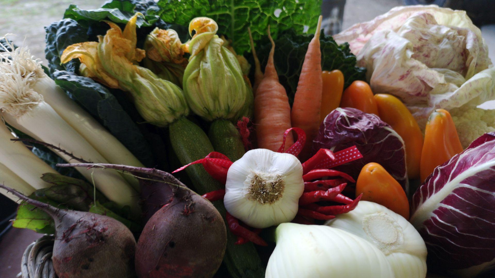 i prodotti del mercato contadino di piazza san francesco