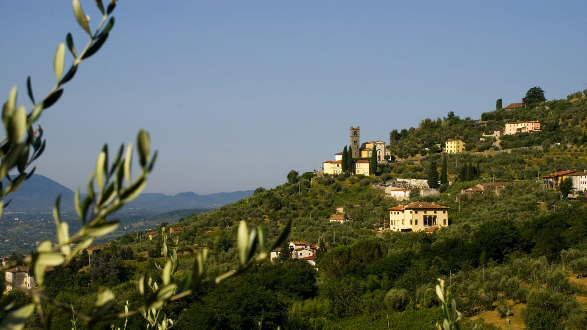 colline lucchesi nei pressi del paese di Tofori