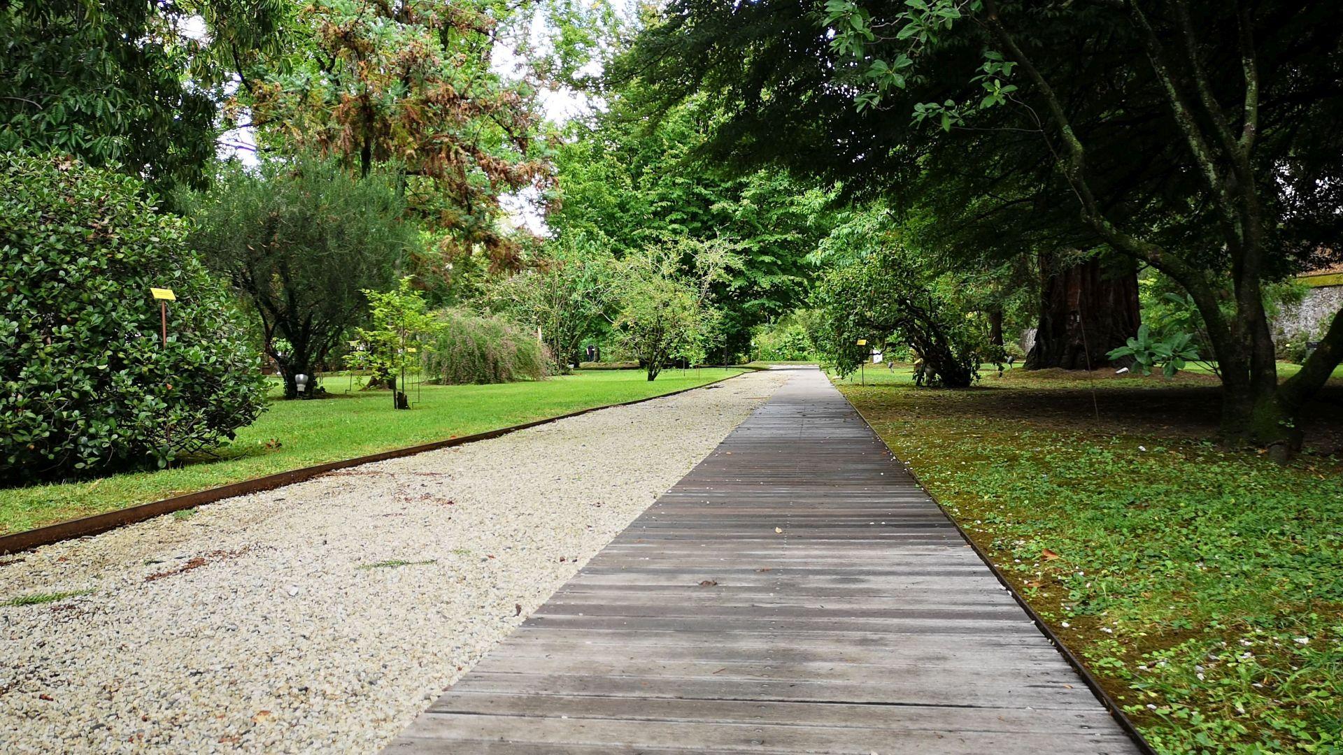 walkway at the botanical garden