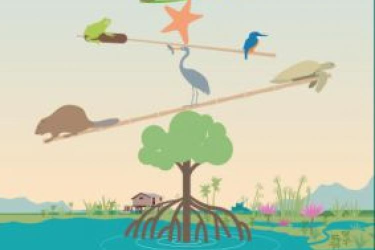 World wetlands day poster 2020