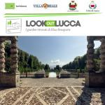 Immagine Logo. Look out Lucca – visite guidate a Villa Reale